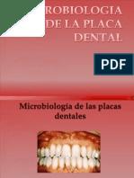 Microbiologia de La Placa y La Caries