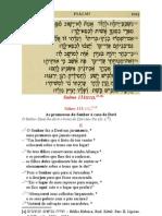 catequese - Eleição de David e de Sião - Salmo 131, 11-18