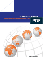 Global Health Risks Report Full