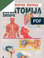 Anatomija - Zmogus - 1999