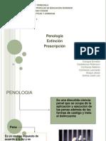 Penal 3 penologia Prescripcion Extincion