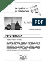 (Componentes_qu_micos_das_plantas_medicinais)