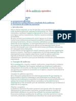 Características de La Auditoría Operativa