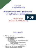W2001_2008_Lecture_5