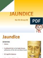 Biochemistry of Jaundice Group 2 Final