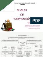 4.- Presentacion Niveles de Comprension