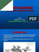 Bio Metabolisme