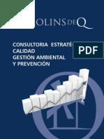 Consultoria Implantacion Iso 9001 Iso 14001 Ohsas 18001 Prevencion Riesgos Molins de Q