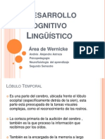 Desarrollo Cognitivo Lingüístico