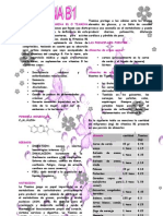 Vitamina B1 - Catherin botina toledo