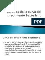 Fases Es de La Curva Del Crecimiento Bacteria No