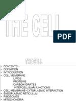 Full Cell2[1]
