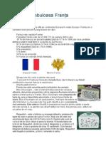 Referat Franța