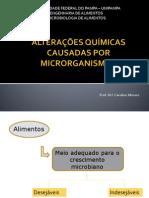 Alterações-químicas-causadas-Por-microrganismos