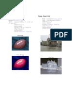 Pmg Processing