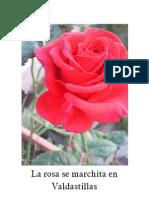 La Rosa Se Marchita en Valdastillas
