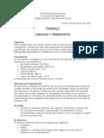 Trabajo Cut&Fill LHD Camion