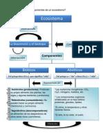 Ecosistema Componentes de Un Ecosistema