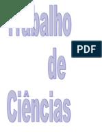 TRABALHO_DE_CIENCIAS_-_AMANDA