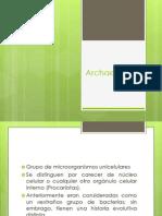 Archaeas