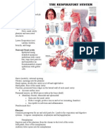 10 Respiratory System