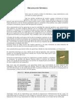 Organizacio Genomica II-07 Final