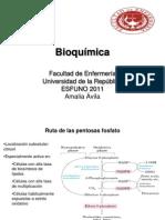 16 -Rpp y Biosintesis de Ac. Grasos Clase 16