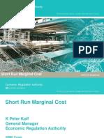 20080306 Economic Regulation Authority Presentation - Short Run Marginal Cost Forum - 26 February 2008