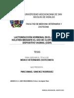 Lactoinduccion Hormonal en El Ganado Holstien Mediante El Uso de Clortalidona y Dispositivo Vaginal Cidr