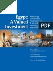Egypt Economic Report 2010