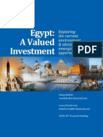 Egypt Economic Report 2010