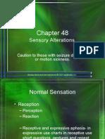 RNSG 1413 Sensory Alteration Presentation-Fall 2006[1]