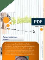 Nematelminhos - Características Gerais