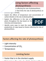 Synthesizing Factors Affecting Photosynthesis