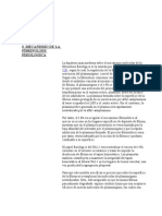 3 Mecanismo de La Fibrinolisis Fisiologica