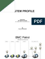 System Profile