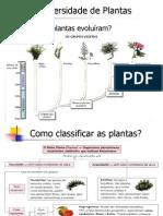 Introdução a Botânica 02