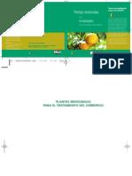 Plantas Medic in Ales Sobrepeso Fitoterapia