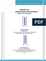 Report on community health Diagnosis