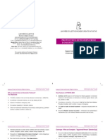 Unifem DV Presentation Booklet