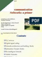 TLC Networks Primer