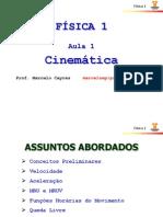 Aula 1 - Cinematica