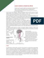 Enfermedad Vascular Cerebral y Trastornos Afine1