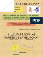 Neuron As