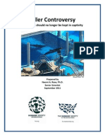 Killer Controversy- why orcas should no longer be kept in captivity
