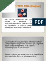Inmuno Linfocitos Cd4 y 8