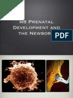 u04 Developmental Psych Slides
