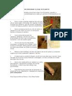 Material Agricultura Sustentavel