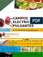 CAMPOS ELECTRICOS PULSANTES