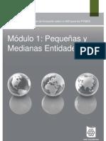 Modulo 1_PequenasyMedianasEntidades[1]